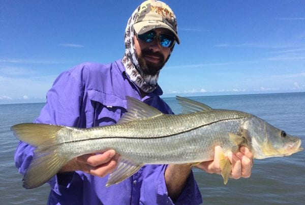 naples snook fishing