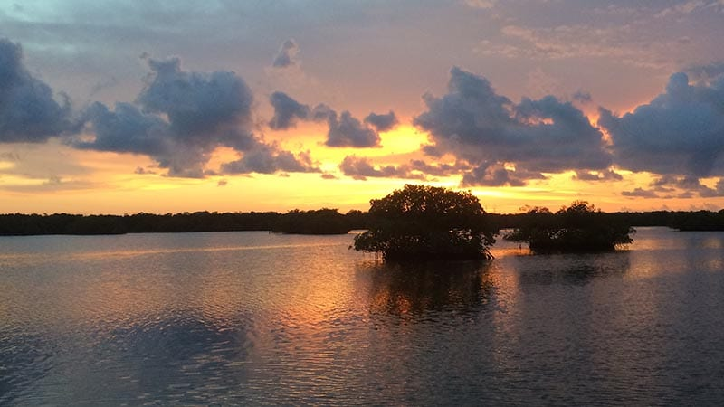 All About the Ten Thousand Islands